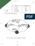 Conceptos Basicos 1o Vol I 337-552  Telesecundaria