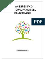 PLAN ESPECÍFICO I-NIVEL MEDIO MAYOR