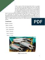 10. tenualosa ilisha.pdf