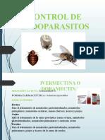 CONTROL DE ENDOPARASITOS 1