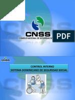Control  Interno SDSS.final