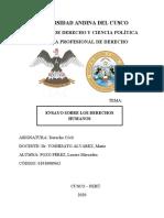 LOS DERECHOS DE LA PERSONA.docx