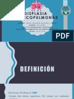displasiabroncopulmonar-180918011106