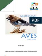 Observacao Das Aves