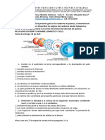 Guía 1 Modelos atómicos ciclo V