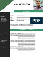 90-curriculum-vitae-normal-97-2003.doc