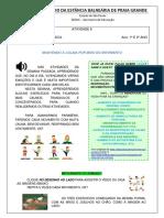 Ativ 08 - 1º e 2º ano_Fund - Educação Física