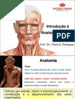 Introdução a anatomia imam