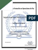2.2 DIPLOMA - APOYO LOGÍSTICO OPERATIVO A LAS MISIONES DE MANTENIMIENTO DE LA PAZ - CURSO INTERMEDIO DE LOGÍSTICA