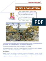 MARTES - ECOSISTEMAS.doc