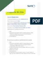 PDFCita.pdf