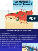 membrane and transport