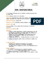 Cadena Respiratoria Ficha de Aprendizaje