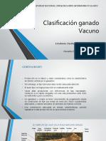 Clasificación ganado Vacuno.pptx