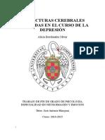 ESTRUCTURAS_CEREBRALES_ALTERADAS_EN_EL_C