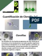 6_CLOROFILA.pdf