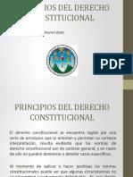 Principios del Derecho Constitucional