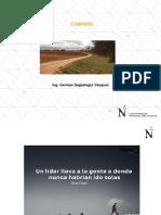 CURVAS HORIZONTALES.pdf