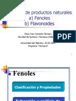 Fenoles-Flavonoides_-ppt_4