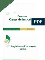 Proceso_de_Carga.docx