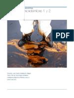 Actividades curso de toxicología Industrial.pdf