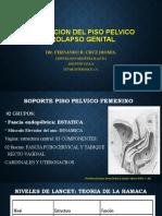 ALTERACION DEL PISO PELVICO UPAO 2020