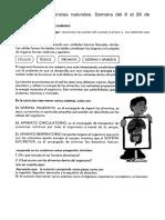 Taller de laboratorio de ciencias PDF