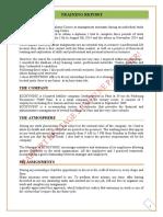 training report gpme.pdf