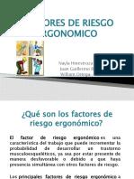 FACTORES DE RIESGO ERGONOMICO