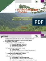 Copia (1)Presentacion Proarbol Mas Completa