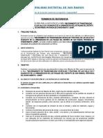 TDR MAESTRO DE OBRA.docx