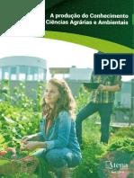 2019-CAPITULO DE LIVRO - Erica- APLICAÇÃO DE PROTOCOLO DE AVALIAÇÃO RÁPIDA DE RIOS no Riacho Tocantins - Capitulo 8.pdf