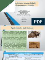 Tipologia pitbull y cobra