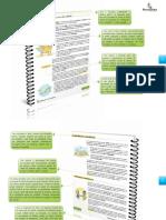 Manual do Instrutor - Cidadania e Meio Ambiente