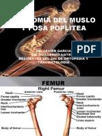 SEMINARIO MUSLO Y FOSA POPLITEA