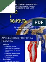 seminario 7 de anatomia. muslo fosa poplit 1