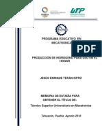 Tesina-buena-Producción-de-hidrógeno-para-uso-en-el-hogar.pdf
