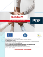 C11 Prezentare PPT