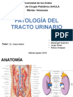 PATOLOGIA TRACTO URINARIO CRP.pptx