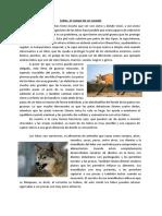 Texto lobos editado