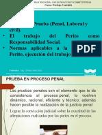 SESION_V_DE_PERITAJE_CONTABLE