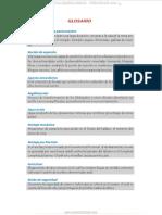 material-glosario-terminos-significados-mineria-geologia-geomecanica.pdf