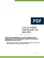 An FoQus Summary Report LLIN Portuguese Wp Changes