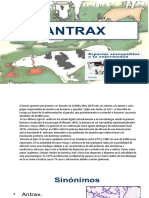 antrax.pptx
