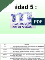 moleculas de la vida_1_103948353