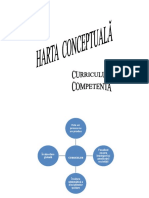 0_harta_conceptuala_curriculum.doc