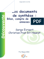 Documents de synthese