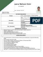 CVNELSONFIGUERA1_1_.pdf