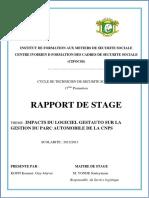 Impact Du Logiciel Gestauto Sur La Gestion Du Parc Automobile de La Cnps