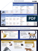 Protocolos Vacunales de Gato